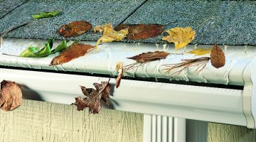 leaf guard gutter services
